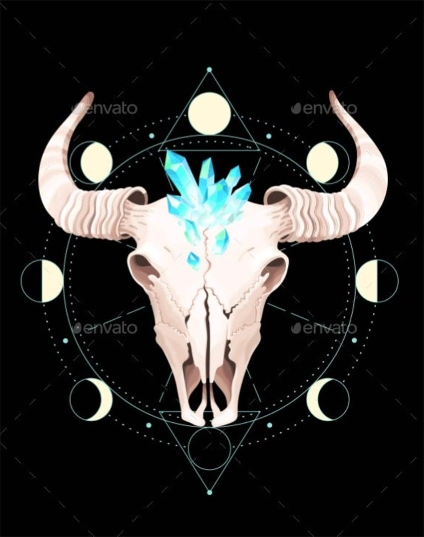 Skull of a Bull Put Into Geometrical Figures