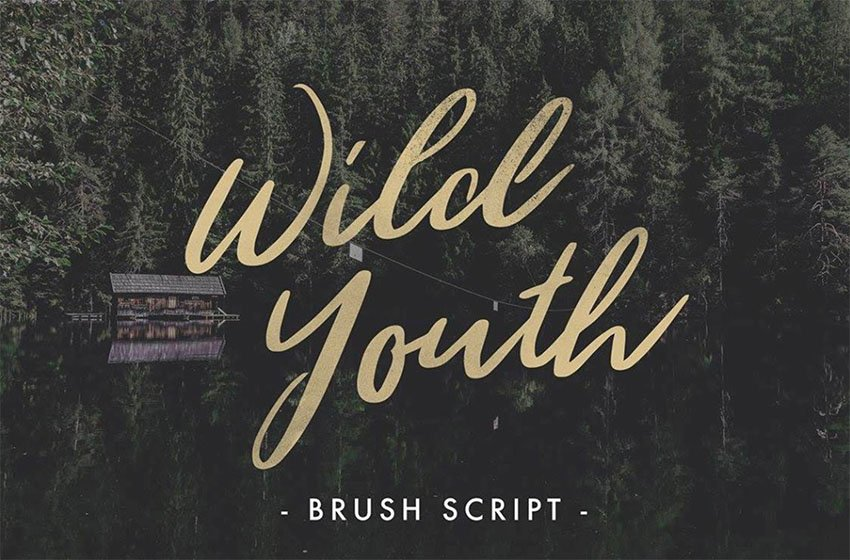 Wild Youth Signature Script Font Free Download