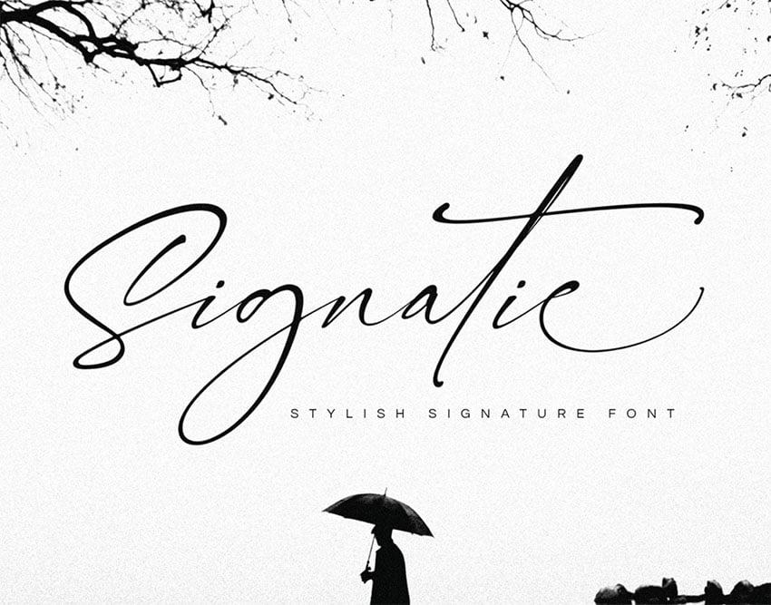 FREE  Signatie Signature Type Fonts