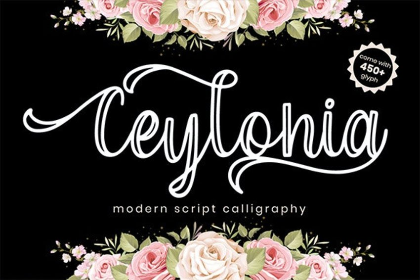 Ceylonia Calligraphy Font with Swashes