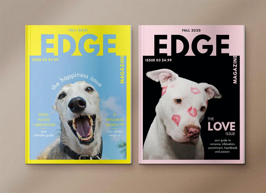 How to Create a Magazine Cover in Affinity Publisher