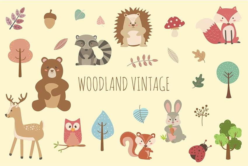 Vintage Animal Illustrations