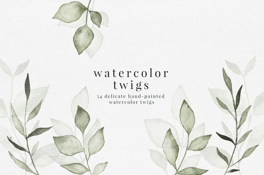 Botanical Watercolor Illustration