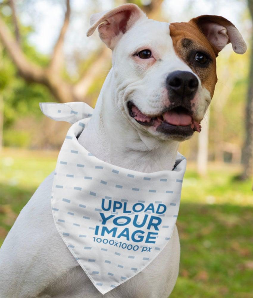 Pet Bandana Mockup Featuring a Dog