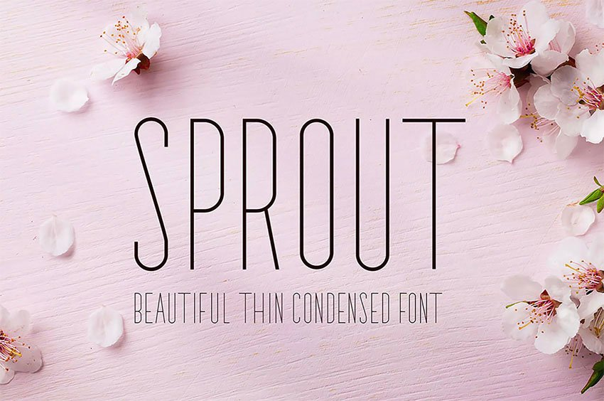 Sprout Thin Font Types