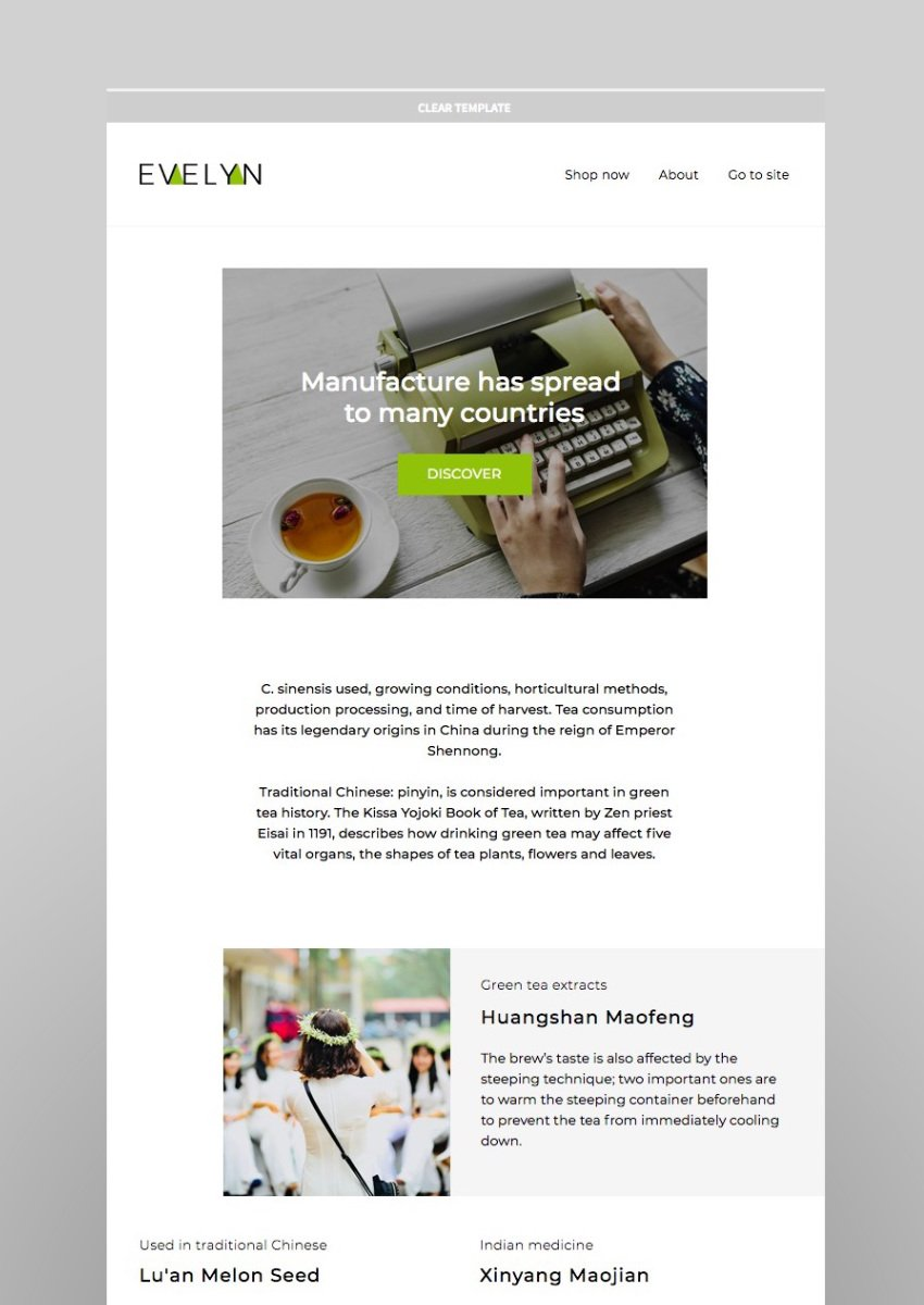 Evelyn Responsive Email StampReady Builder MailChimp