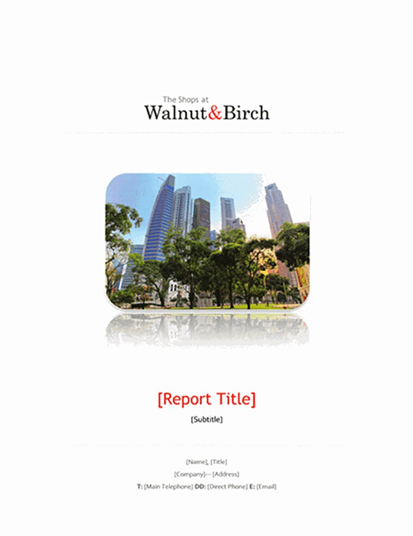 Business report (6 pages)