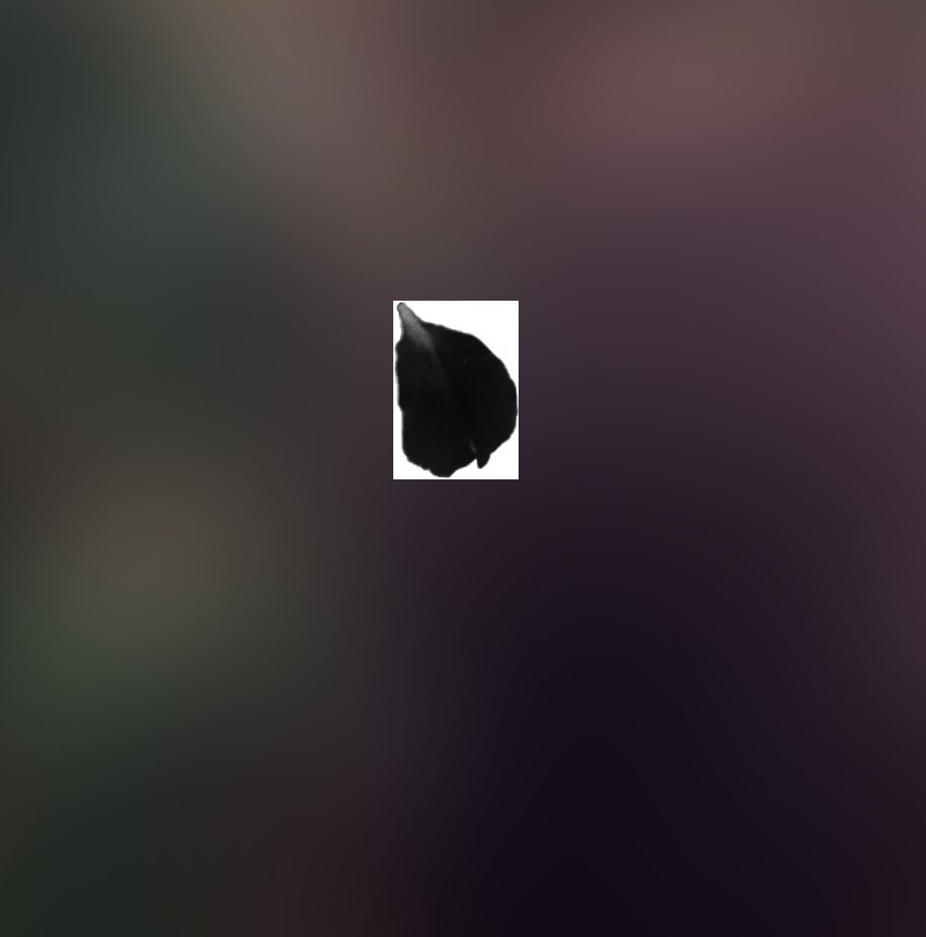 invert image to black