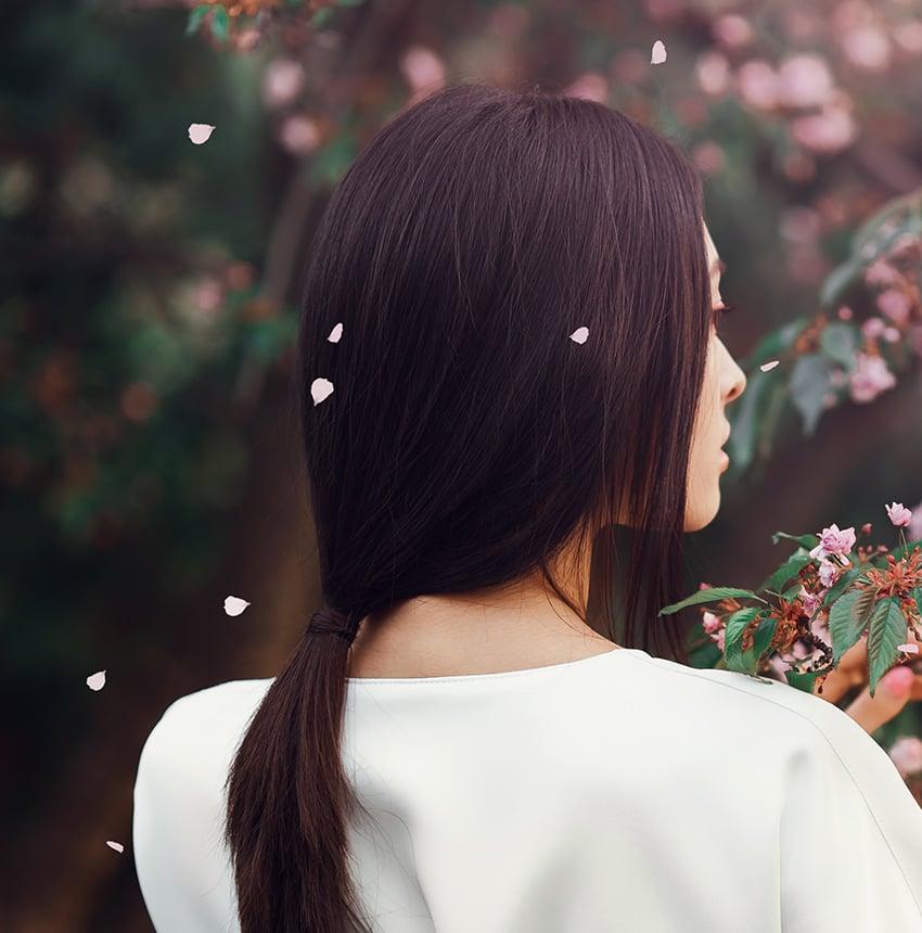 paint sakura petals falling