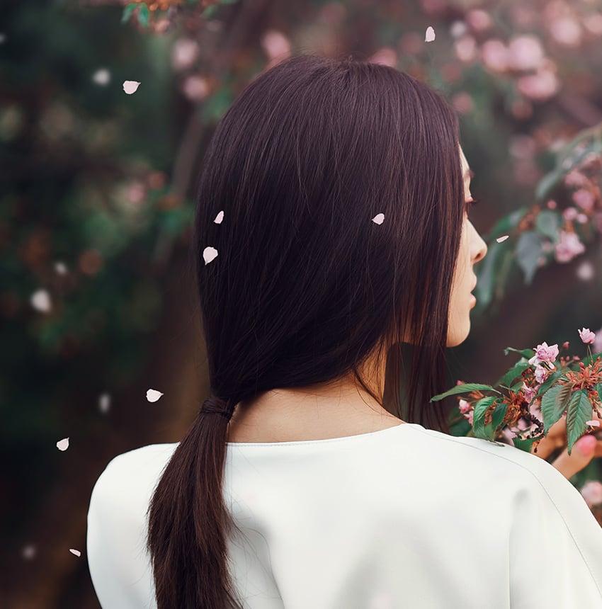 paint background sakura petals falling