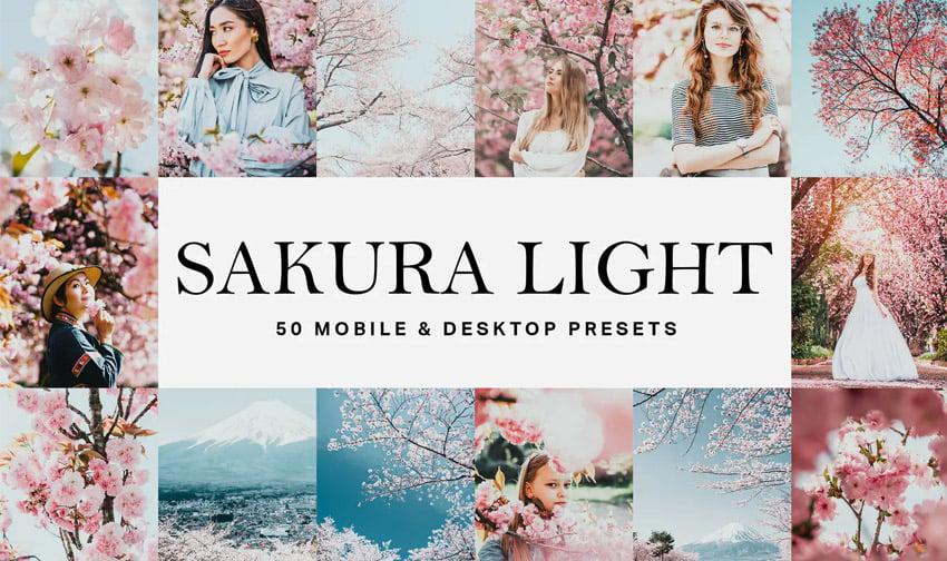 50 Sakura Light Lightroom Presets and LUTs
