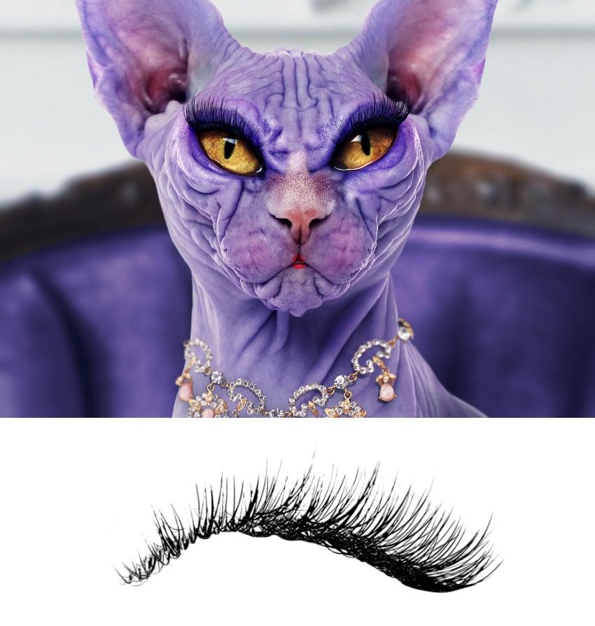 how to make an eyelash brush in photoshop