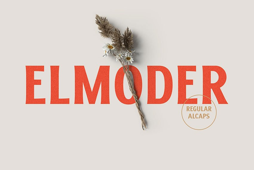 ELMODER Regular