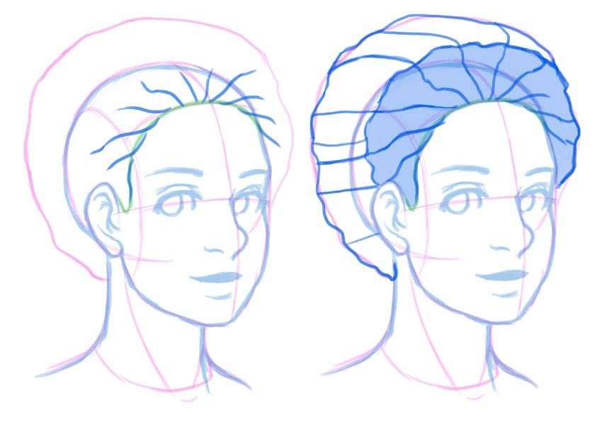 Observing the hair via cross contours