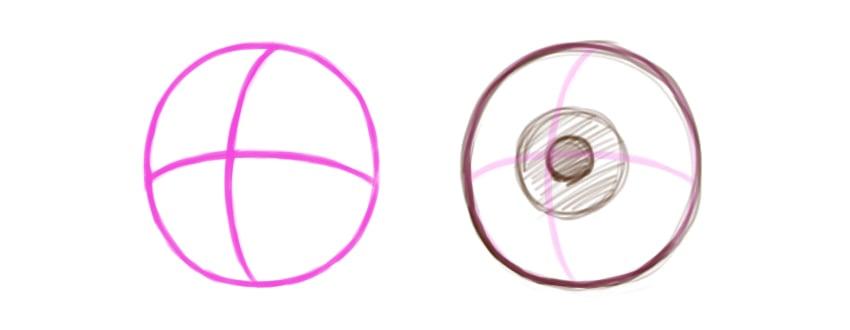 Example of eye ball shape