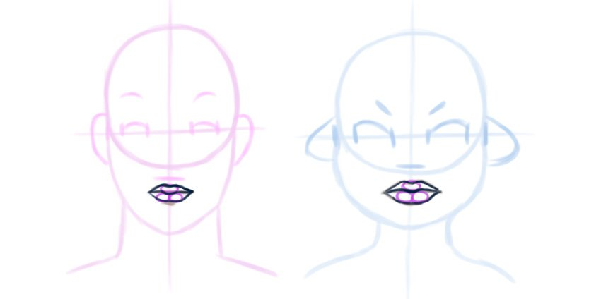 Example of the mouths proportions and construction