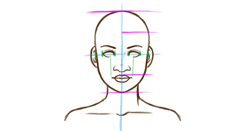 Example face proportions