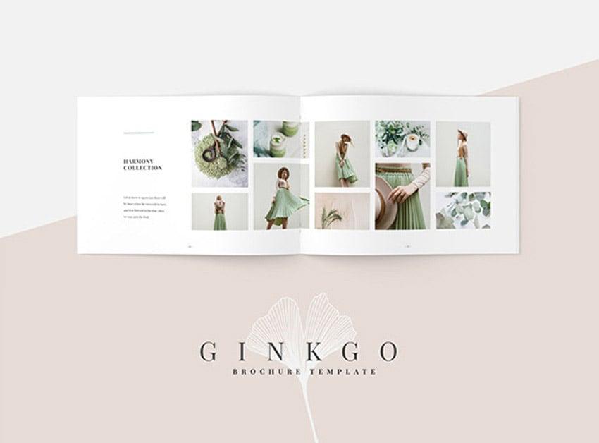 Ginkgo Brochure Template