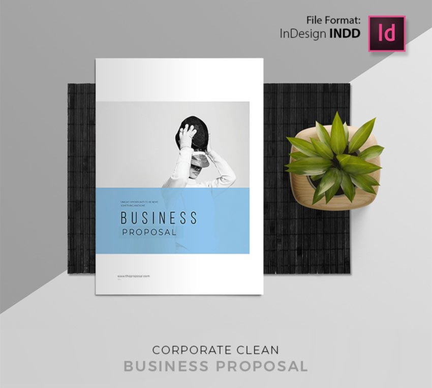Free InDesign Marketing Proposal Template Download