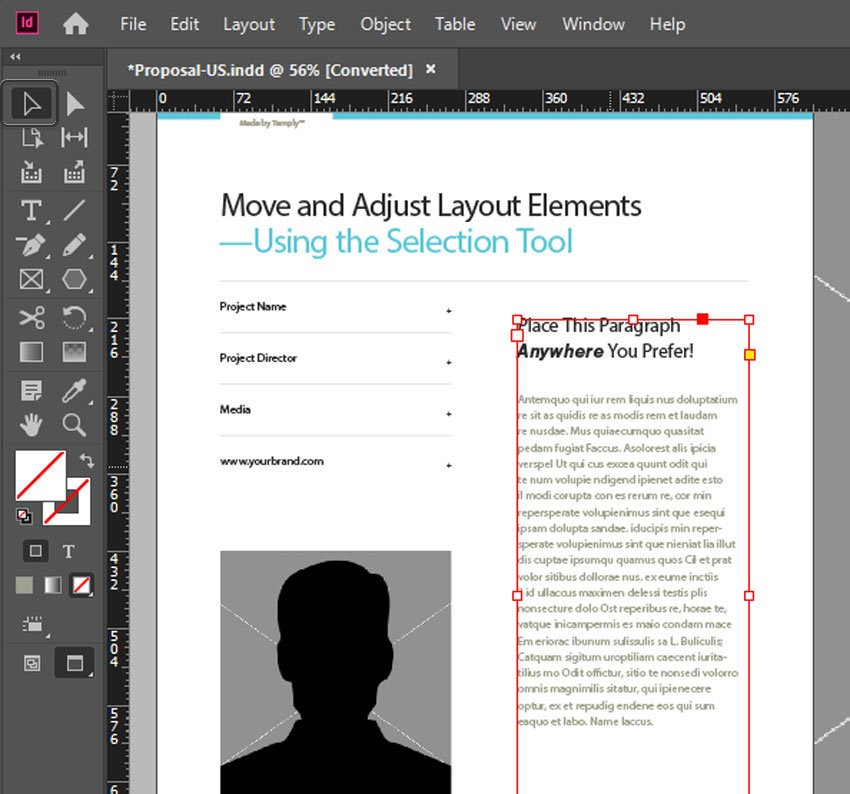 Selection Tool InDesign