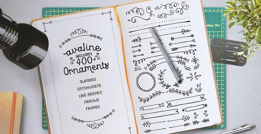 Avaline Script Sketch