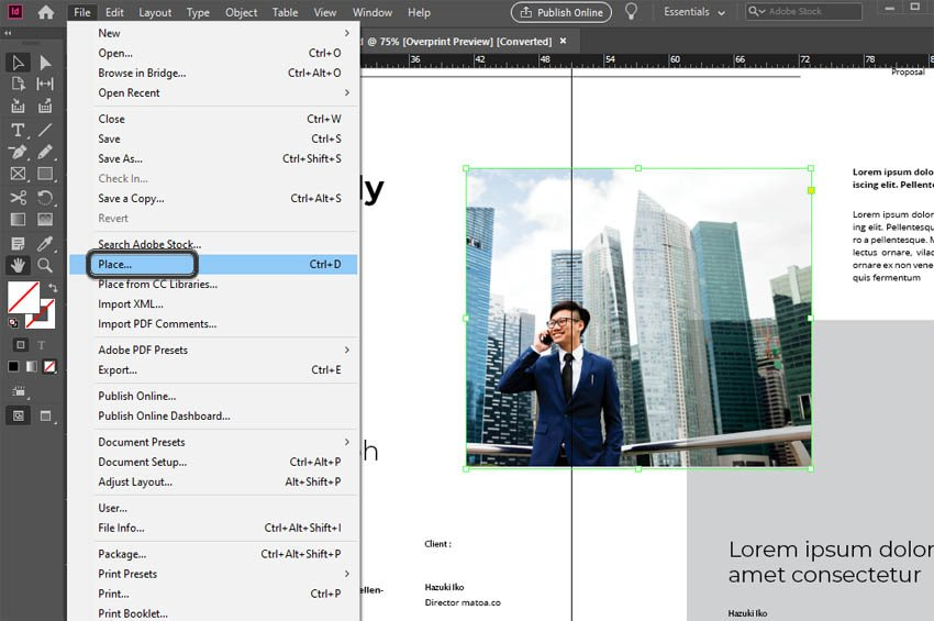 InDesign Place Image
