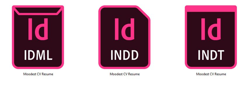Edit Adobe InDesign Resume Template Tutorial InDesign file types