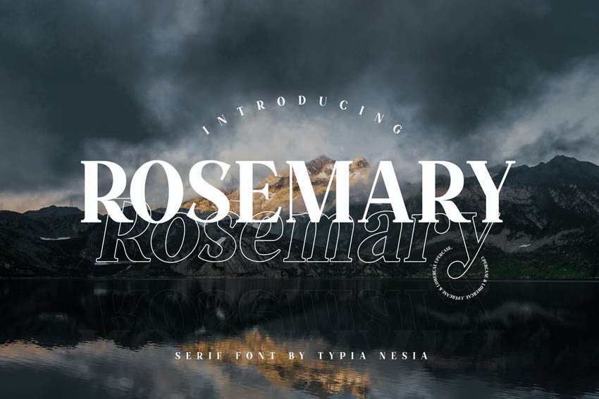Rosemary Clean Modern Fonts
