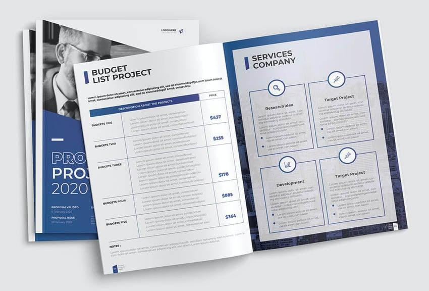 premium InDesign business plan template
