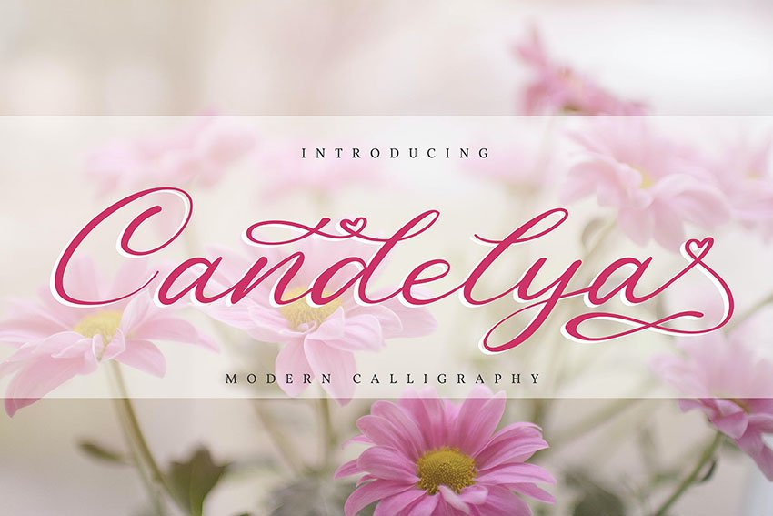 Candelya | Modern Calligraphy