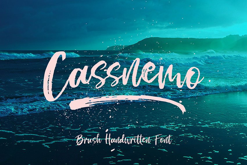 Cassnemo Textured Script Font