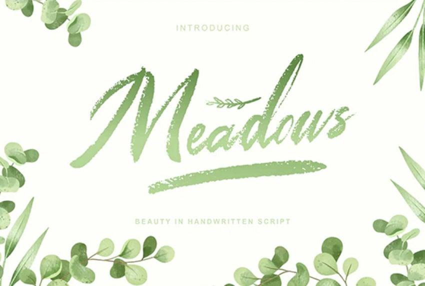 Meadows - Textured Script Font