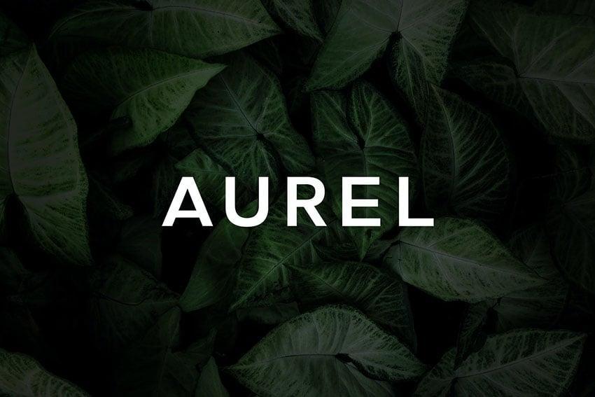 Aurel - An Open Sans Serif Typeface