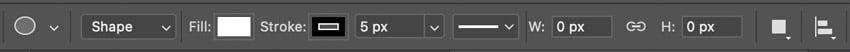 photoshop options panel