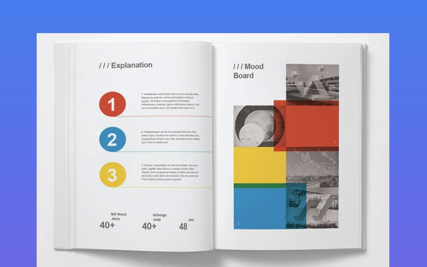 MS Word Identity Proposal & Report