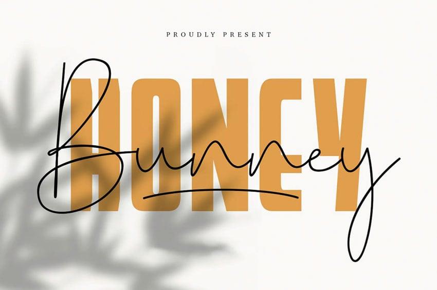 Honey bunny font duo