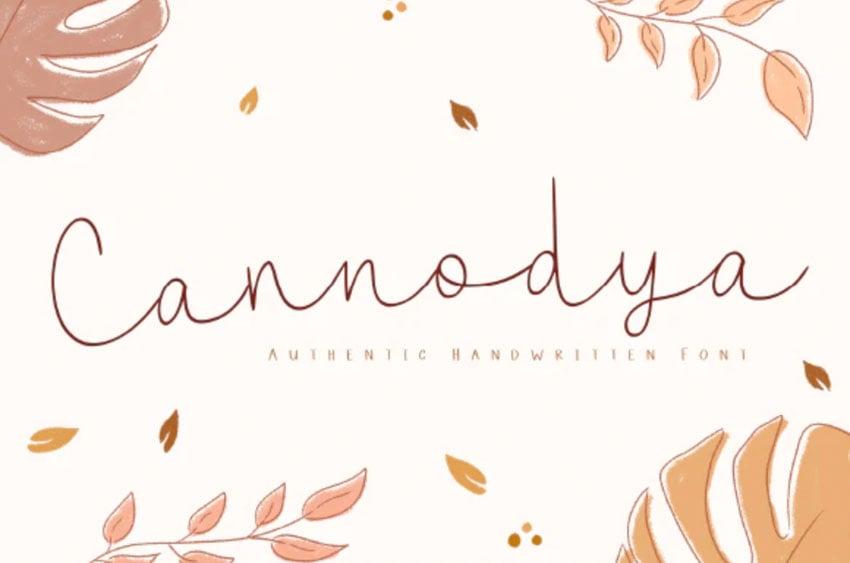 Cannodya Fall Calligraphy Font