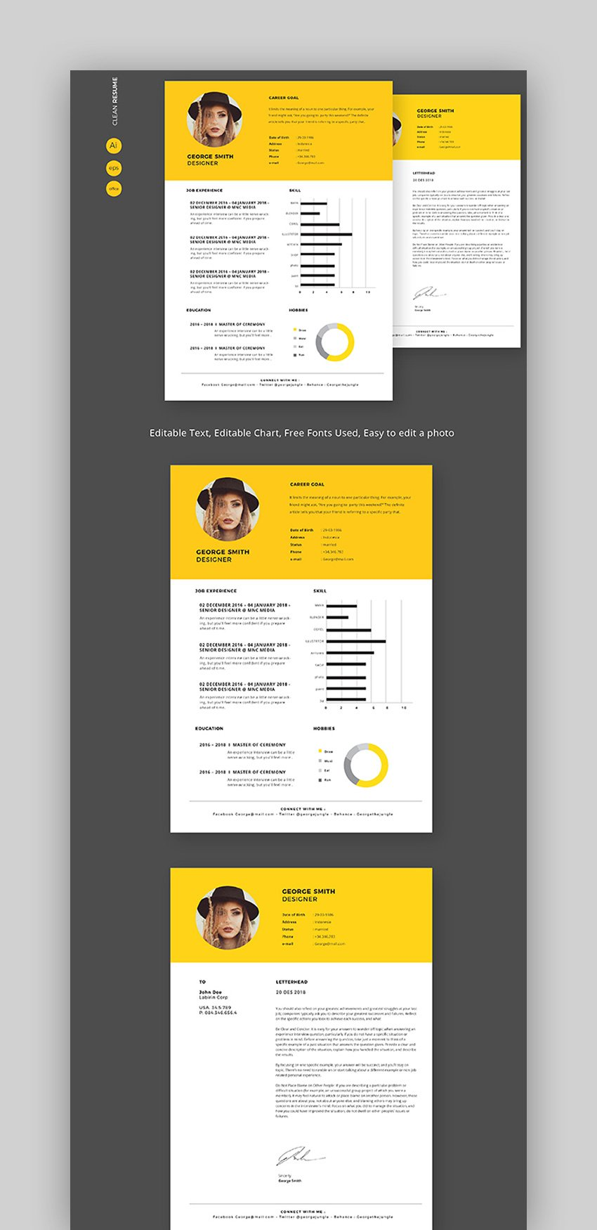 Simple Graphical CV Template
