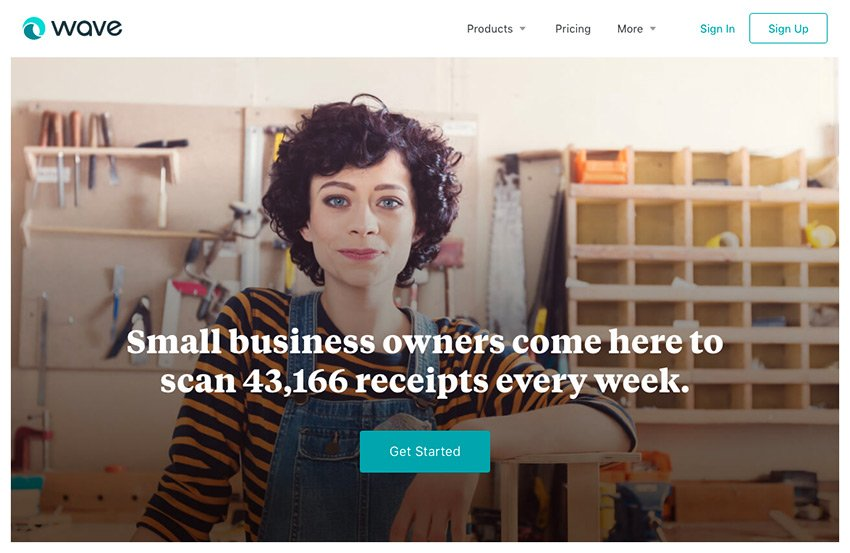 Wave Online Accounting Software Small Business
