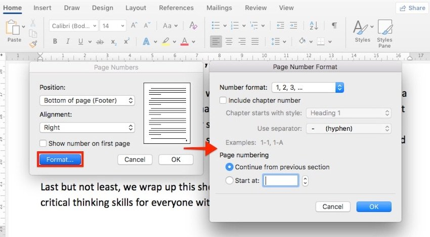 Format page numbers in Microsoft Word