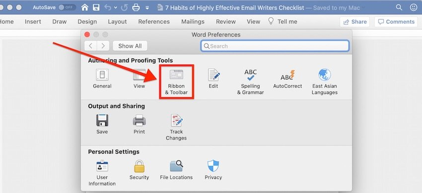 MS Word Preferences dialog