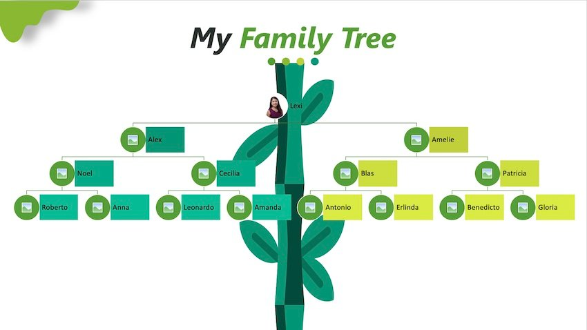 how to create a family tree in powerpoint - smartart with pictures