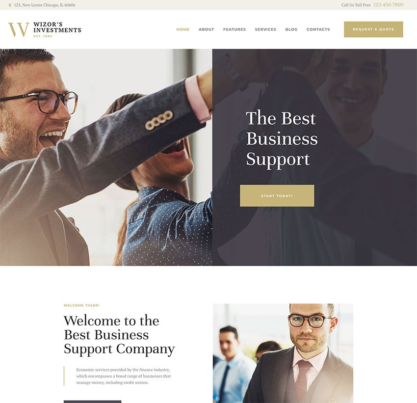 Wizors  Investments  Business Consulting Insurance WordPress Theme