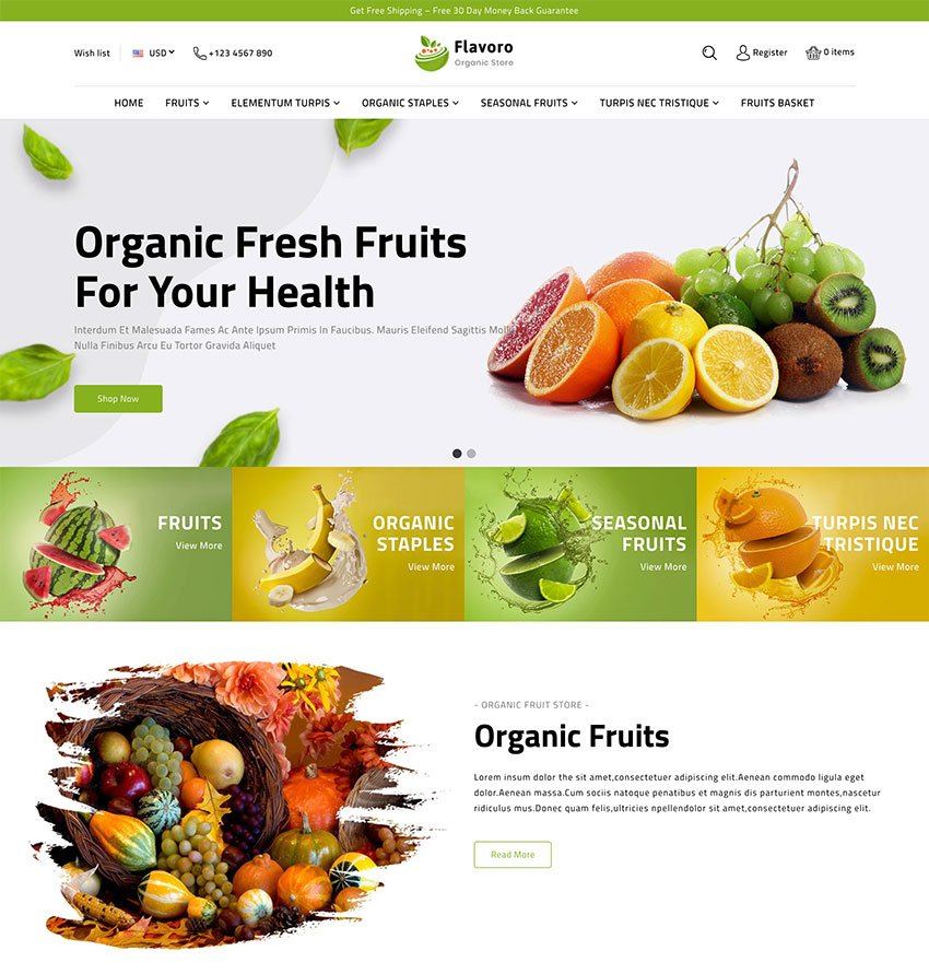 Flavoro Organic Food Shopify Store