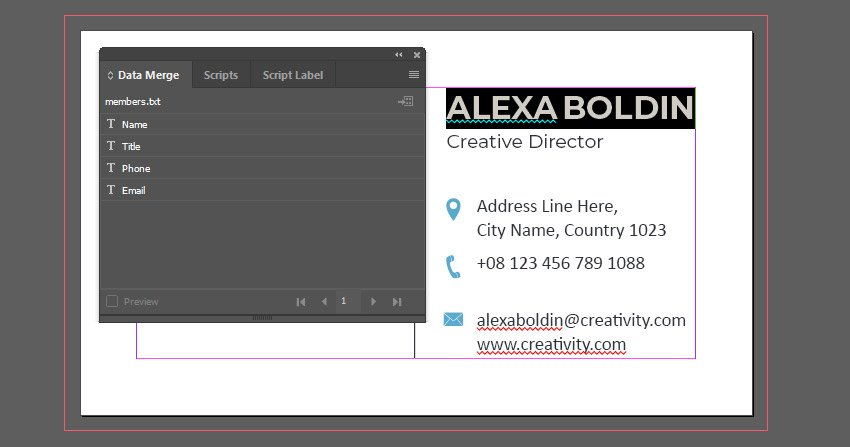 Inserting the Name Label into the Document