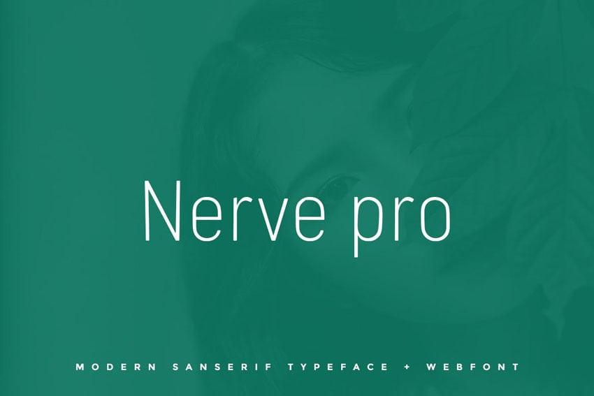 Nerve pro Envato Elements Fonts