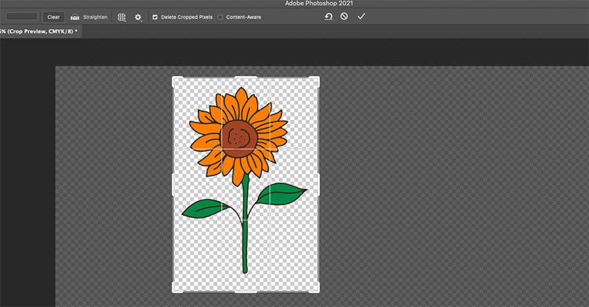 Photoshop SVG Crop Sunflower