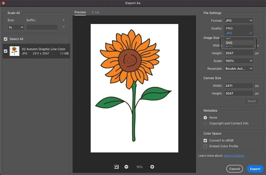 Photoshop Export As Settings For SVG