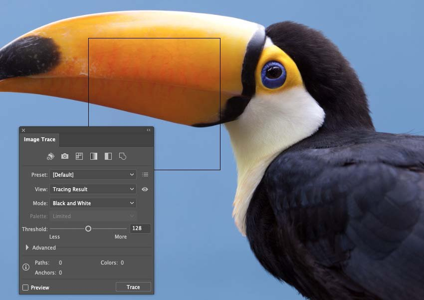 How to Trace Photo In Illustrator Image Trace Options