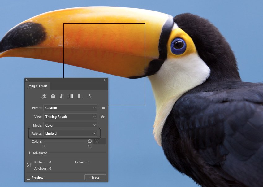 How to Trace Photo In Illustrator Pallette Limited